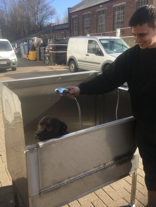 a stainless steel dog grooming bath being modelled by buster